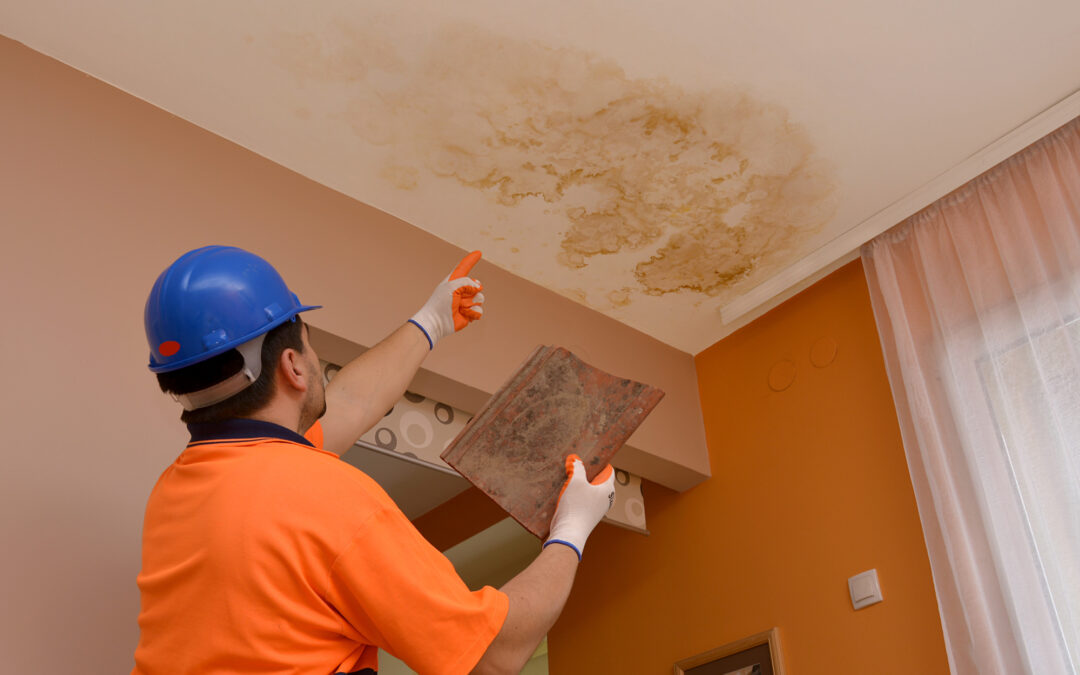 Inspection Time: What Does a Home Inspection Look For?
